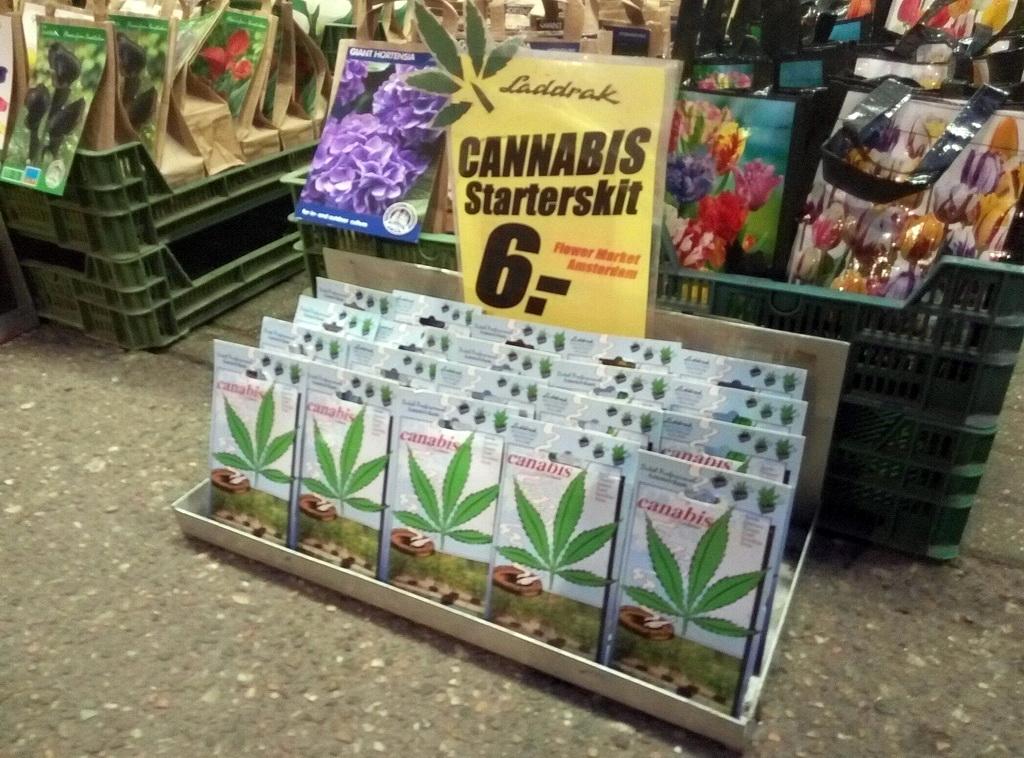 Уголовной ответственностью за выращивание марихуаны туристов не напугать :-)